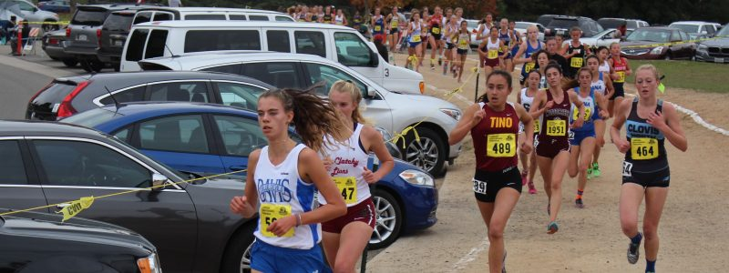 2016 California state cross-country championship